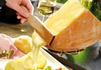 Raclette 12 Nützliche Tipps Käse Im Shop Raclettede