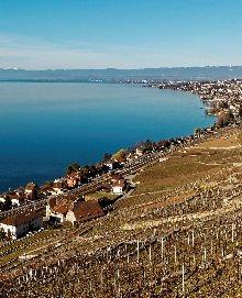 Weinregion Waadt, Schweiz