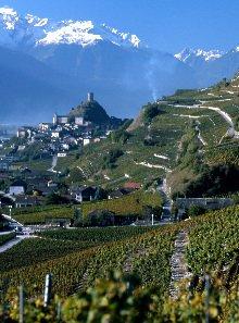 Weinregion Wallis, Schweiz